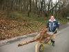 Arbeitskreis Umweltschutz Bochum e. V. (AkU) schafft Lebensräume in Bochumer Bachbett