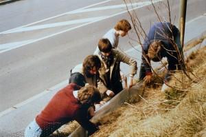 Amphibienschutz in den 80- und 90igern: AkU-Mitglieder sammeln Kröten am Krötenzaun ein.
